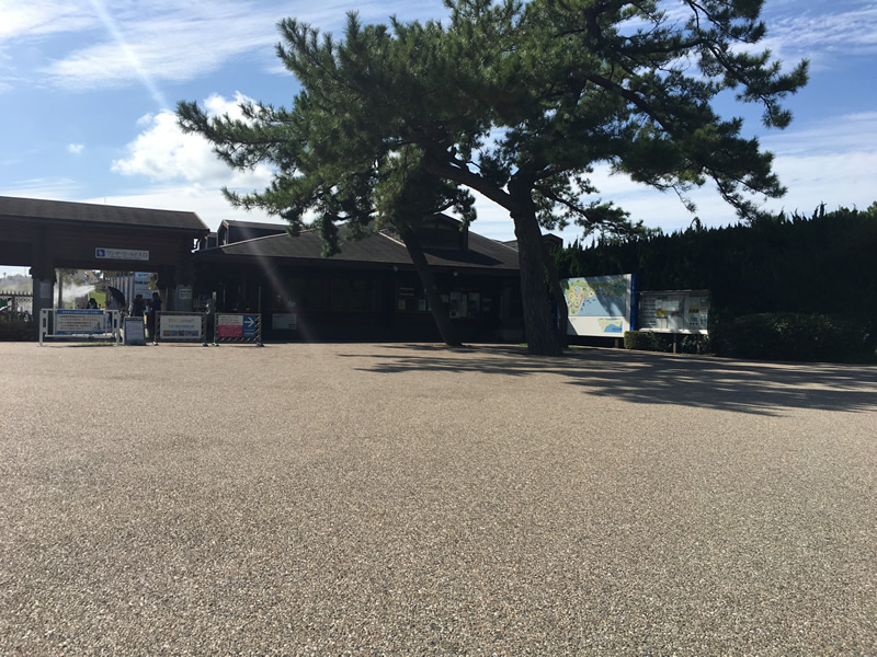 海の中道海浜公園(透水性脱色アスファルト舗装)