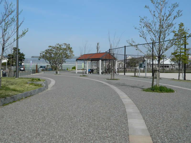 小田部中央公園(脱色アスファルト舗装)