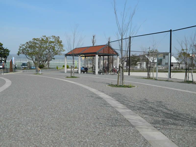 小田部中央公園(透水性脱色アスファルト舗装)