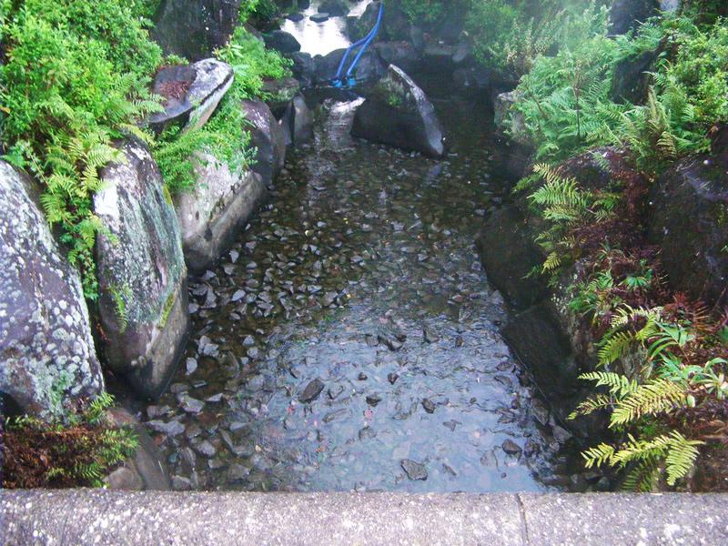 パサージュ琴海アイランドゴルフクラブ 9番ホール池(敷き砂利)