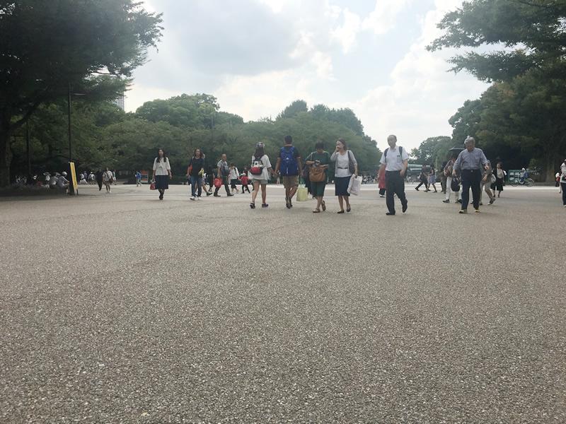 東京都 上野公園(密粒度脱色アスファルト舗装)