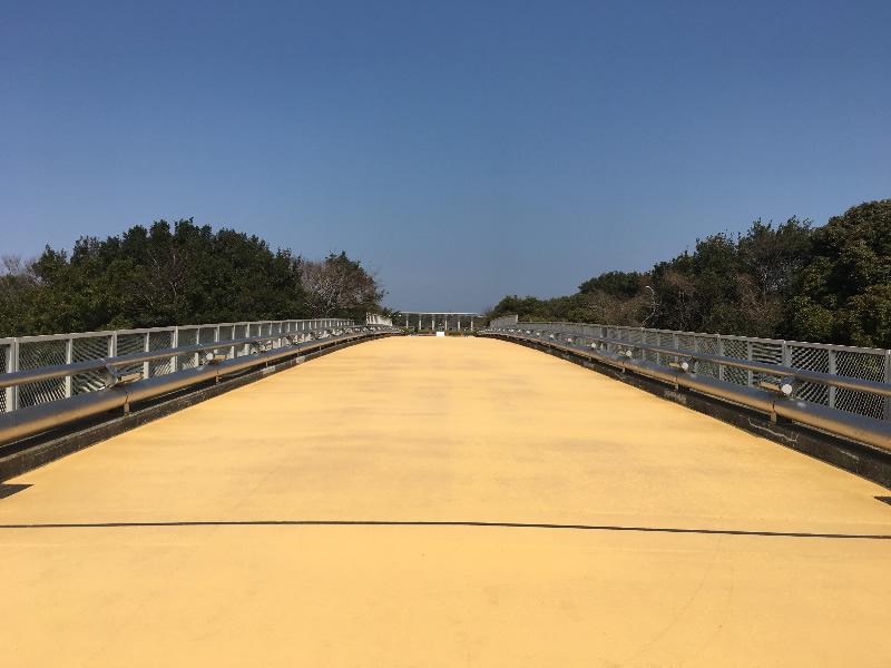 海の中道海浜公園 プロムナード(遮熱性舗装(密粒度アスコン))
